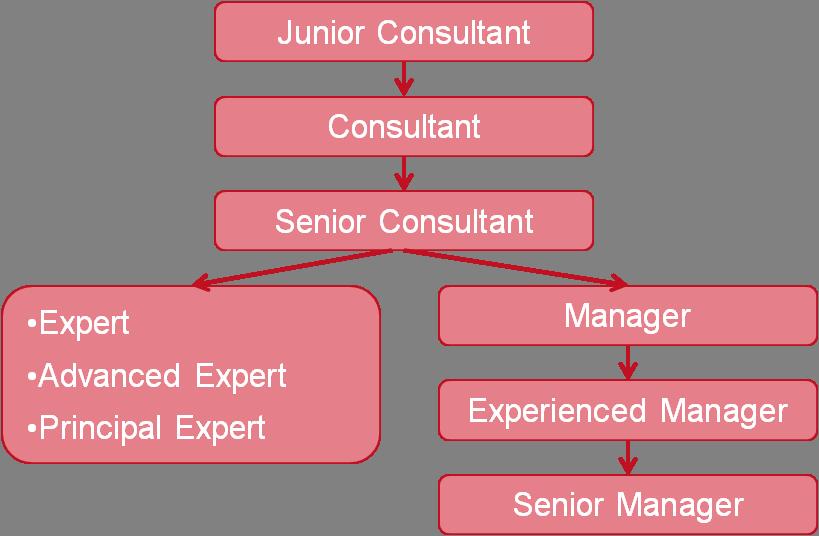 Methis consulting for Junior consultant